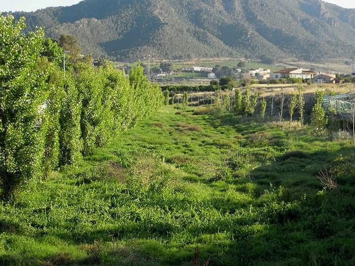 route through the regional park of el valle close to your property at la manga club
